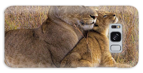 Lion Galaxy Case - Baby Lion With Mother by Henry Jager