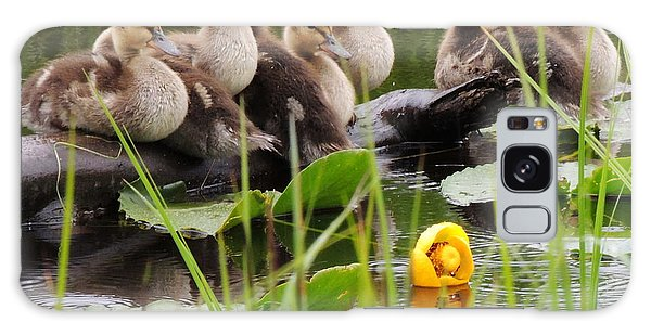 Baby Mallard Galaxy Case by Karen Horn