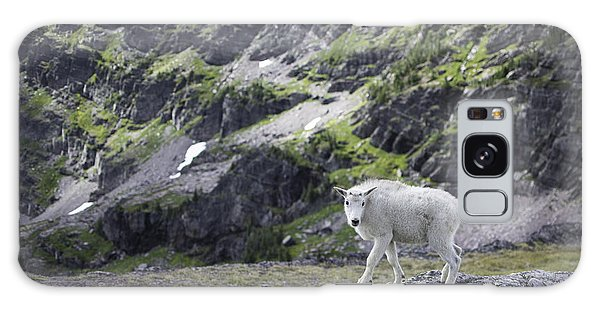 Baby Mountain Goat At Comeau Pass Galaxy Case