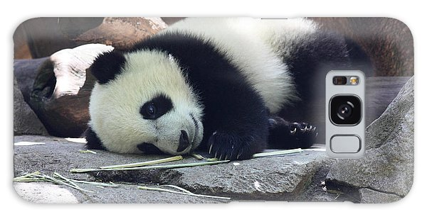 Baby Panda Galaxy Case
