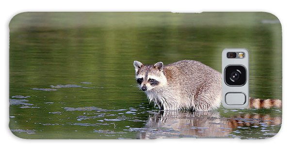 Baby Raccoon In Green Water Galaxy Case