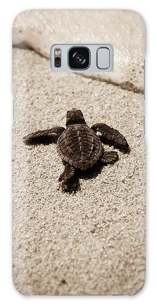 Turtle Galaxy Case - Baby Sea Turtle by Sebastian Musial