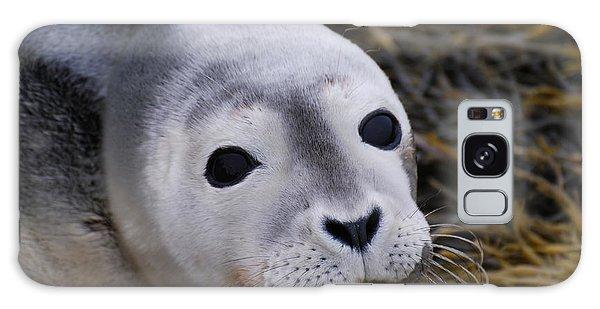 Baby Seal Galaxy Case by DejaVu Designs