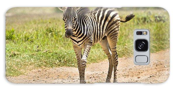 Baby Series Zebra Galaxy Case