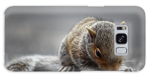 Baby Squirrel Gets A Snack Galaxy Case