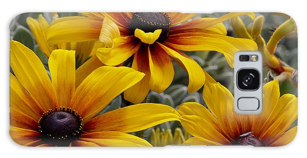Back-eyed-susan Galaxy Case by Ivete Basso Photography