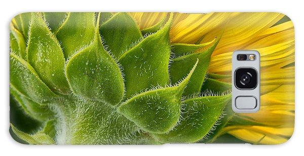 Back Of Sunflower Galaxy Case