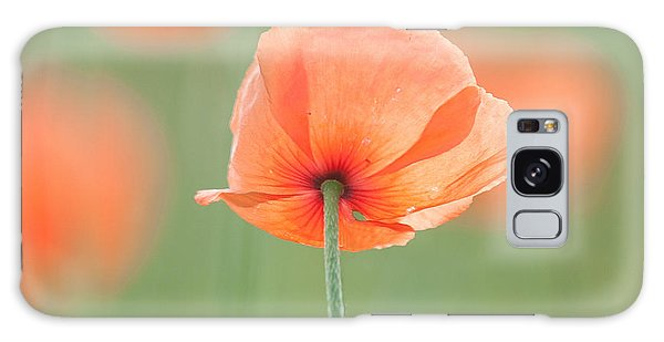 Backlit Poppies Galaxy Case