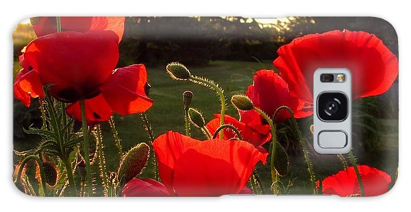 Backlit Red Poppies Galaxy Case