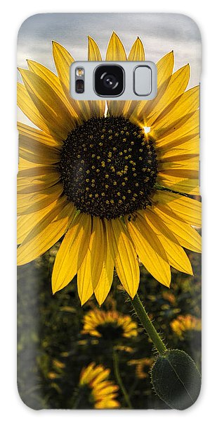 Backlit Sunflower Galaxy Case