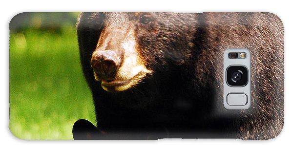 Backyard Bears Galaxy Case by Lori Tambakis