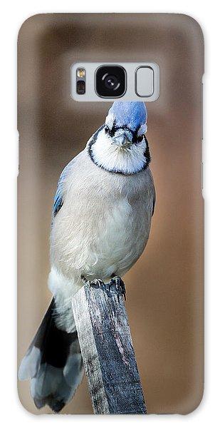 Backyard Birds Blue Jay Galaxy Case