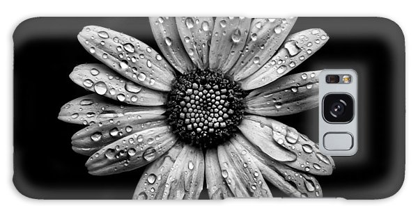 Backyard Flowers In Black And White 16 After The Storm Galaxy Case