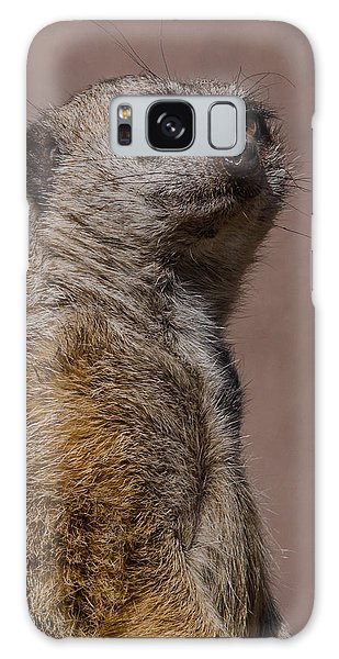 Bad Whisker Day Galaxy Case