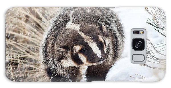 Badger In The Snow Galaxy Case