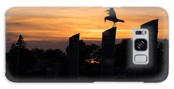 Balance - A Seagull Sunset Silhouette Galaxy Case