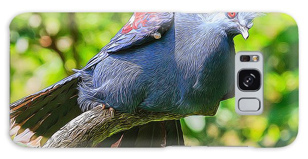 Balanced Pigeon Galaxy Case