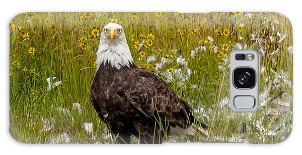 Bald Eagle @ Lunch  Galaxy Case by Trace Kittrell