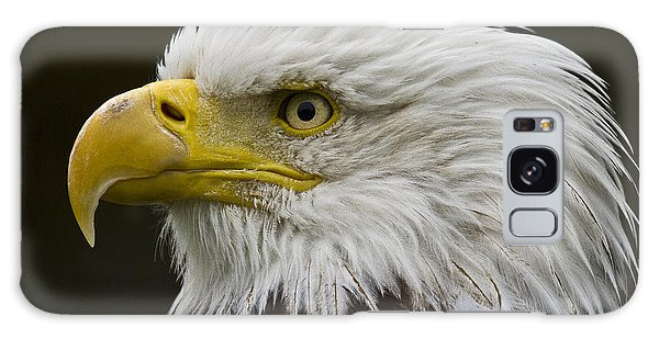Galaxy Case featuring the photograph Bald Eagle - 7 by Heiko Koehrer-Wagner
