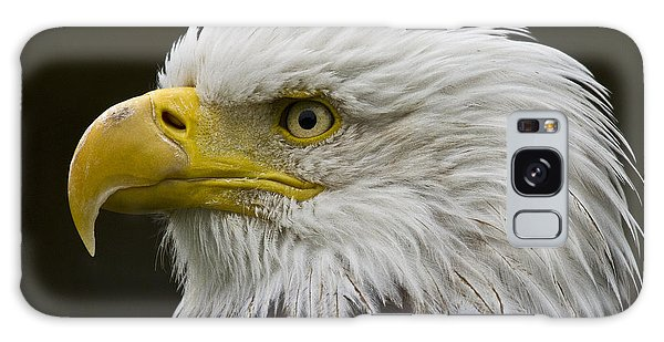 Bald Eagle - 7 Galaxy Case