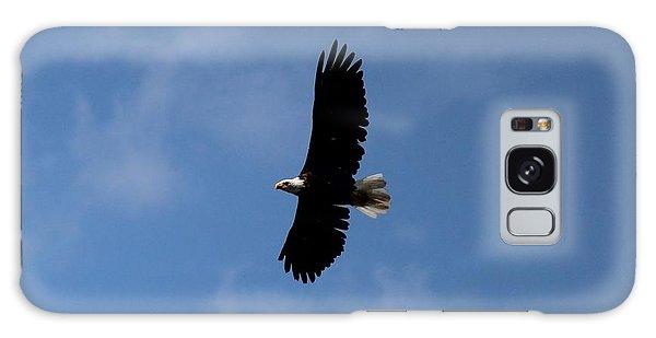 Galaxy Case featuring the photograph Bald Eagle by Ann E Robson