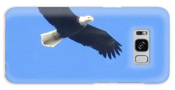Bald Eagle At Lake Rowena Galaxy Case