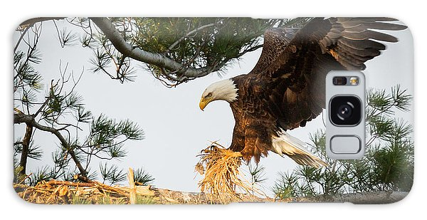 Bald Eagle Building Nest Galaxy Case