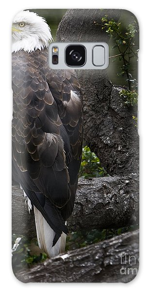 Bald Eagle Galaxy Case by David Millenheft