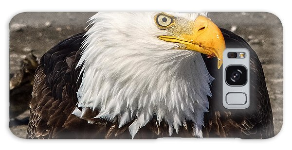 Bald Eagle Looking At You Galaxy Case
