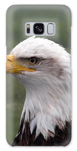 Bald Eagle Portrait Galaxy Case by Brian Chase