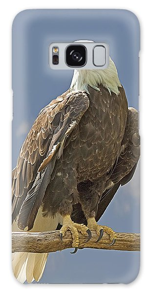 Bald Eagle Portrait Galaxy Case