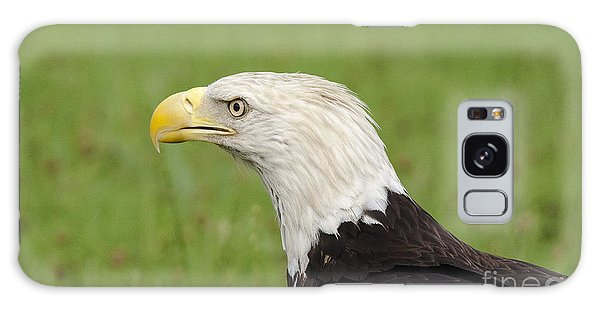 Bald Eagle Portrait Galaxy Case by Ursula Lawrence