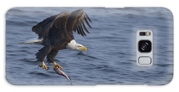 Bald Eagle With A Fish Galaxy Case