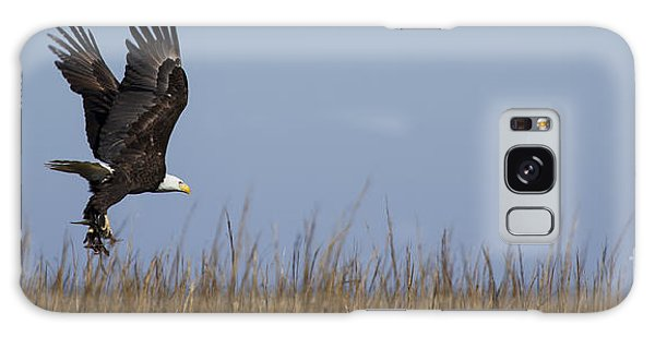 The Eagles Galaxy Case - Bald Eagle With Bird In Talons by Dustin K Ryan