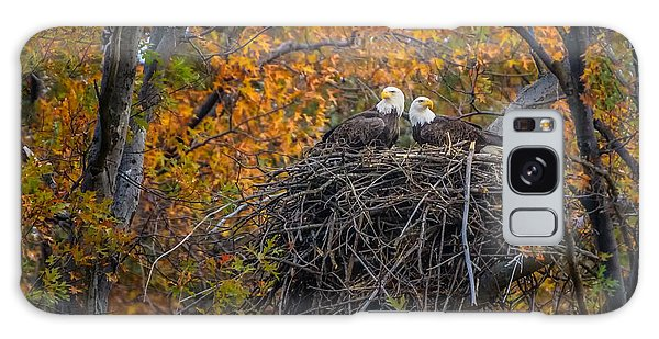 Bald Eagles Nest In Fall Galaxy Case