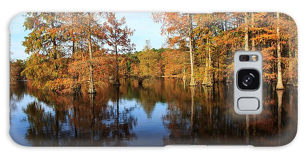 Baldcypress At Trap Pond Galaxy Case by Robert Pilkington