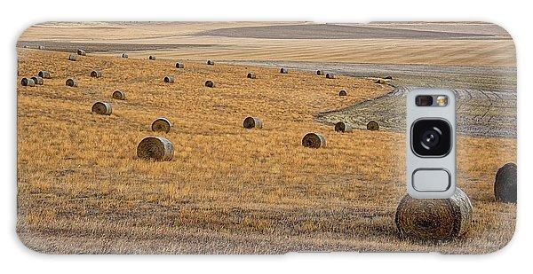 Bales Of Hay Galaxy Case