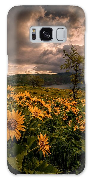 Balsamroot Heaven Galaxy Case