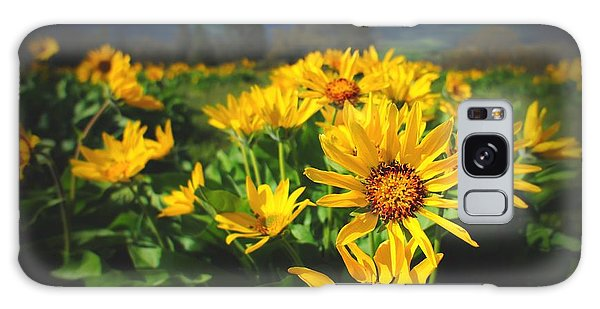Balsamroot Of The Gorge Galaxy Case