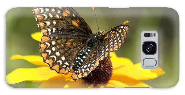 Baltimore Checkerspot And Black-eyed Susan Galaxy Case