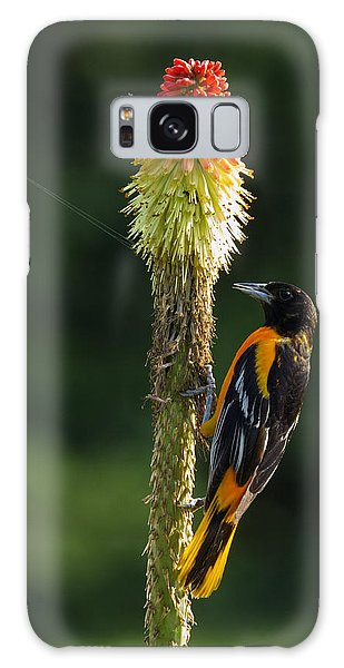 Baltimore Oriole Delight 2 Galaxy Case by David Lester