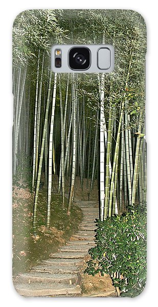Bamboo Forest Pathway Galaxy Case
