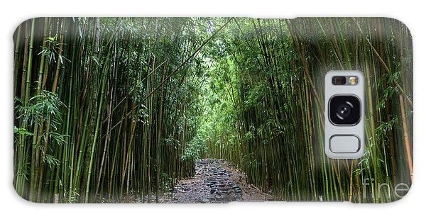 Bamboo Forest Trail Hana Maui Galaxy Case