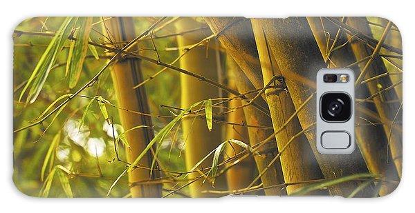 Bamboo Gold Galaxy Case