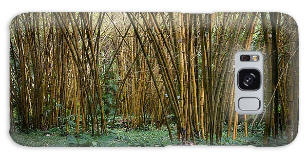 Bamboo Grove Galaxy Case