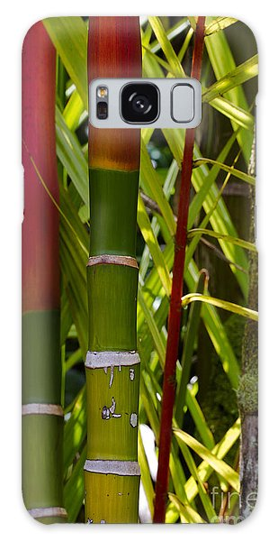 Bamboo Too All Profits Go To Hospice Of The Calumet Area Galaxy Case