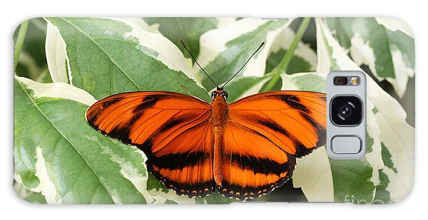 Banded Orange Longwing Butterfly Galaxy Case by Judy Whitton