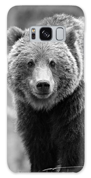 Grizzly Bears Galaxy Case - Banff Grizzly In Black And White by Stephen Stookey