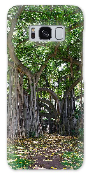 Banyan Tree At Honolulu Zoo Galaxy Case