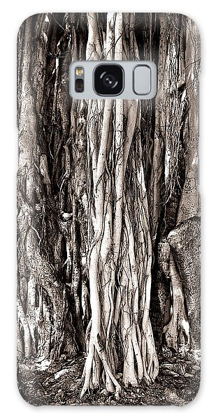 Banyan Tree Galaxy Case